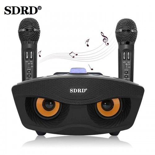 Семейная караоке система на два микрофона SDRD SD-306