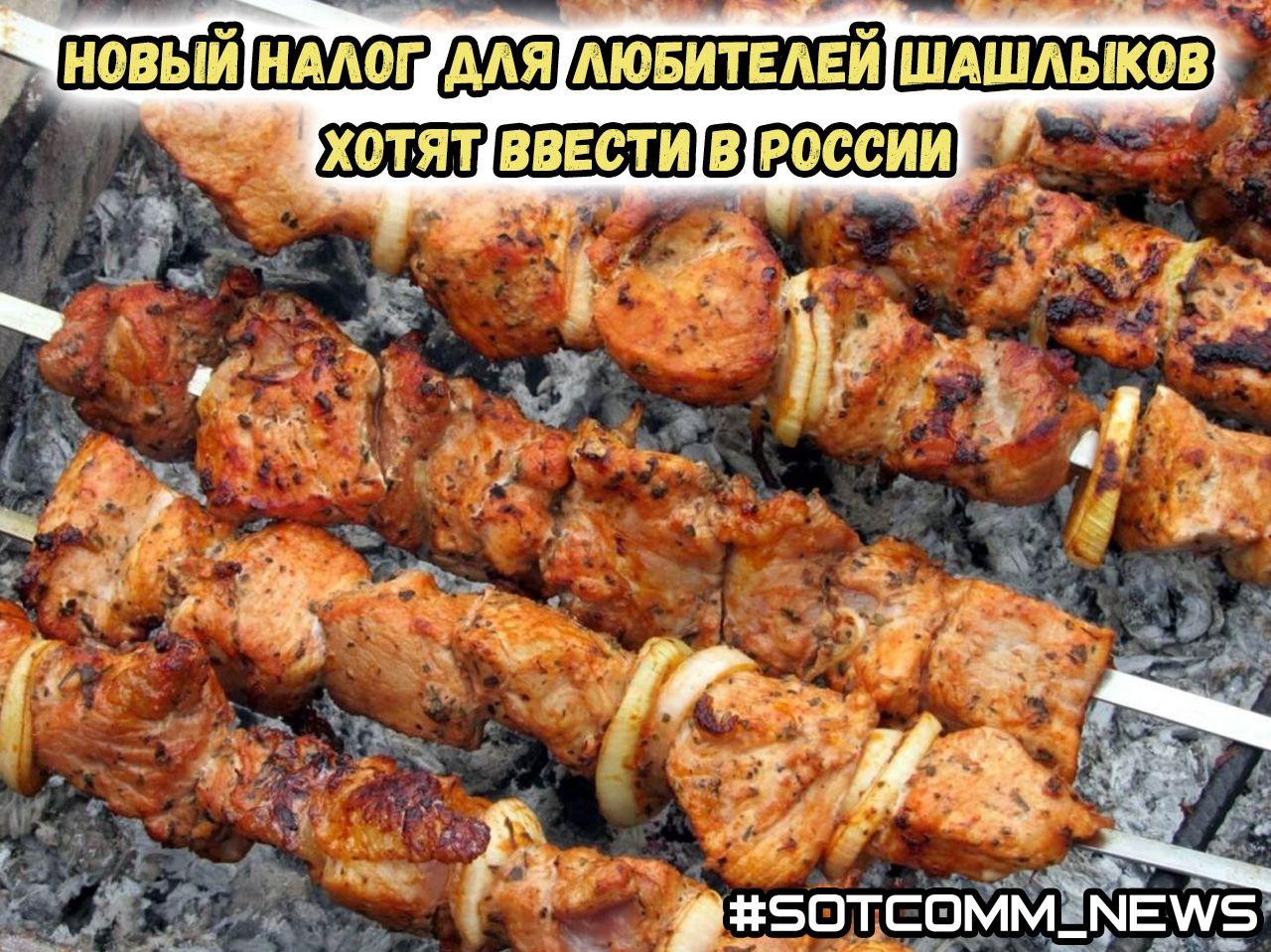 Новый налог для любителей шашлыков хотят ввести в России