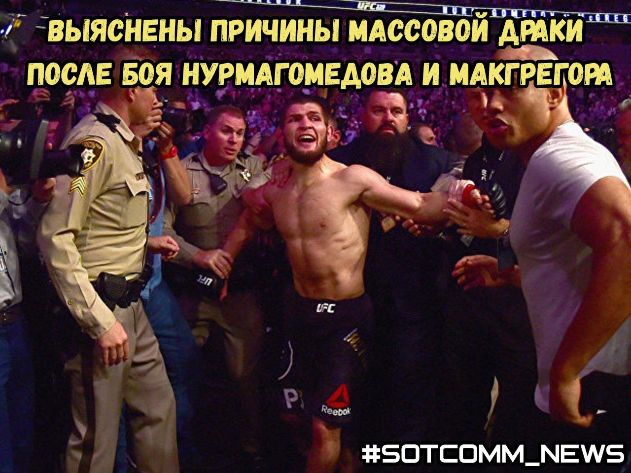 Выяснены причины массовой драки после боя Нурмагомедова и Макгрегора