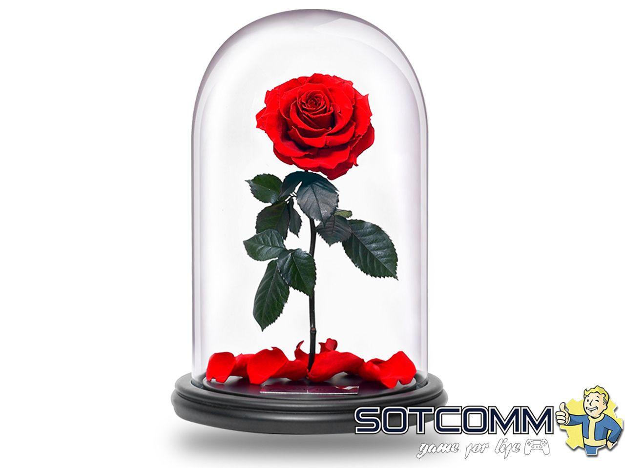 Стабилизированная вечная роза в колбе